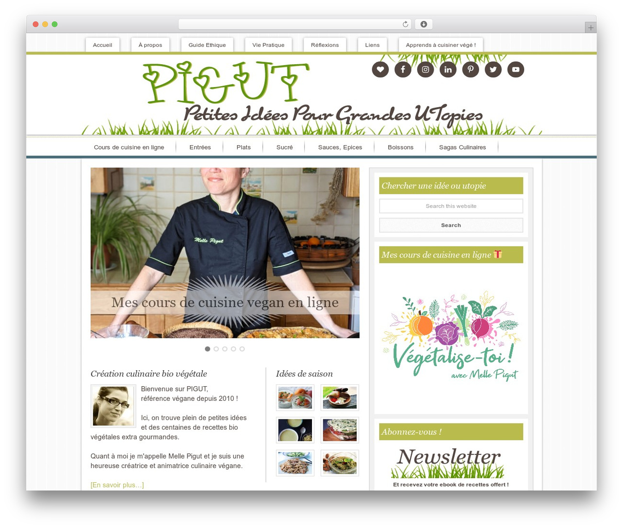 Innovative Child Theme premium WordPress theme - pigut.com