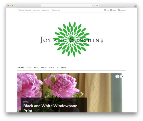 OriginMag WordPress blog template - joyandsunshine.com