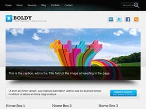 Boldy template WordPress