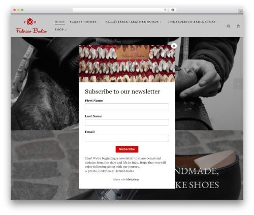 Customizr theme free download - federicobadiashoes.com
