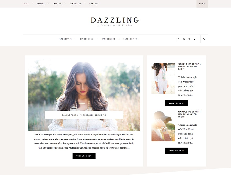 Dazzling Theme WordPress shop theme
