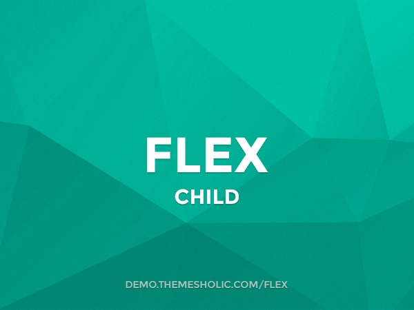 Flex Theme Child WordPress template