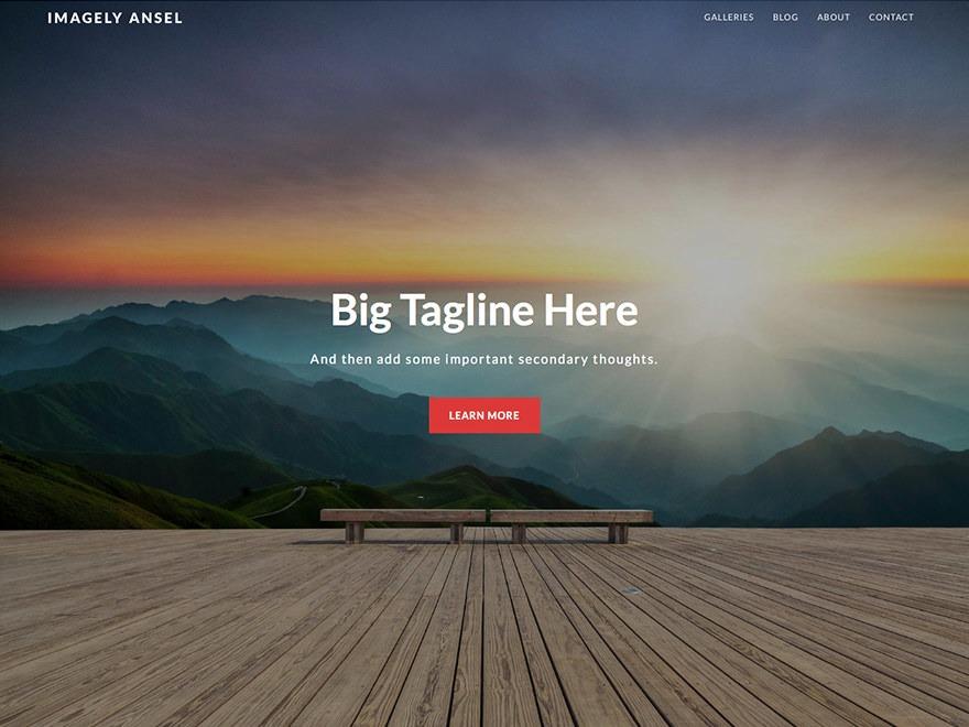 Imagely Ansel WordPress theme