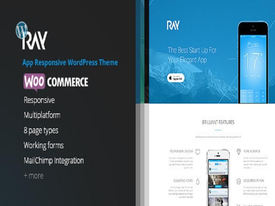 WordPress website template ray