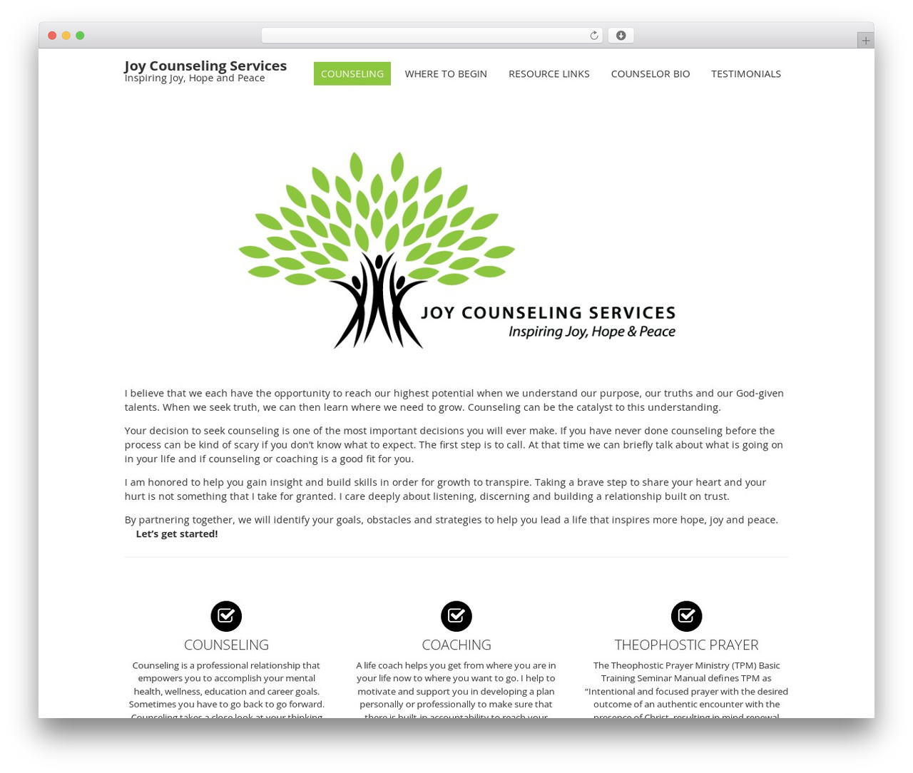 Fruitful Wordpress Theme By Fruitfulcode Joycounselingservices Com