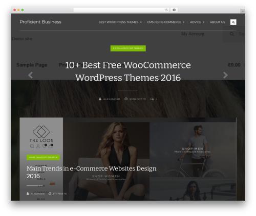 Koala WP theme - proficient-business.com