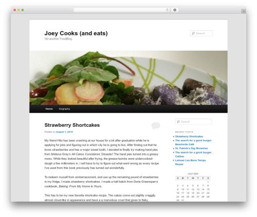 Twenty Eleven template WordPress free - joeycooks.com