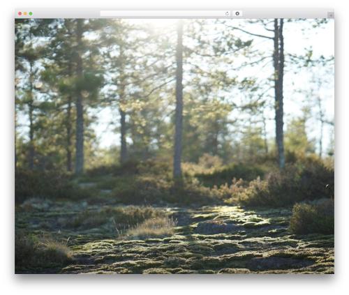Twenty Seventeen WP template - johannalindvall.com