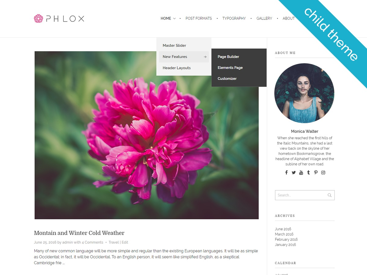 Phlox Child premium WordPress theme