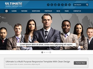 Ultimate (Share on Theme123.Net) WordPress template for business