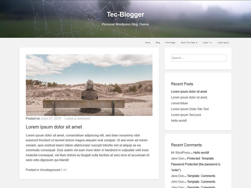 tecblogger Child WordPress blog template