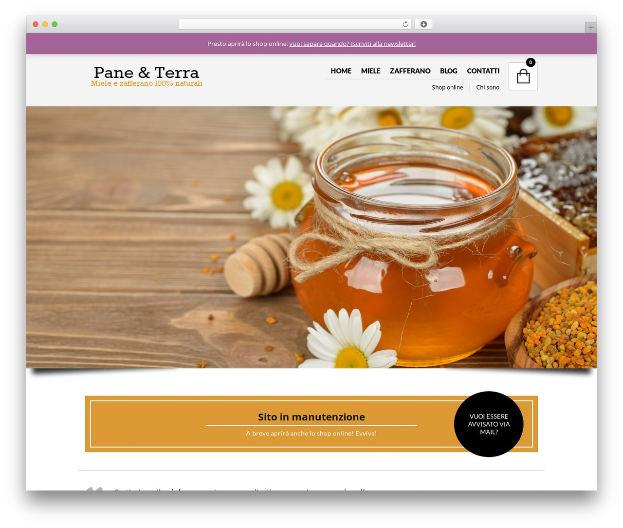 The Retailer WordPress theme - paneeterra.it