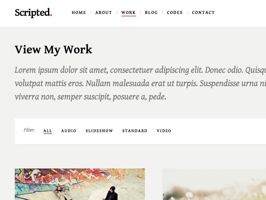 Best WordPress template Scripted Pro