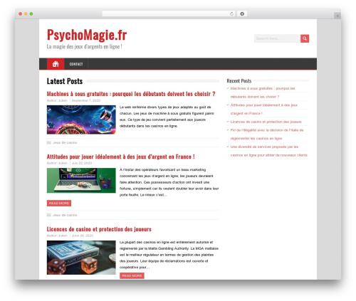 MineZine WordPress template free download - psychomagie.fr