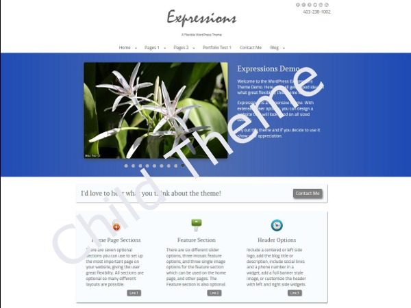 Expressions Child best WordPress template