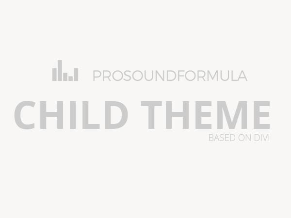 PRO SOUND FORMULA top WordPress theme