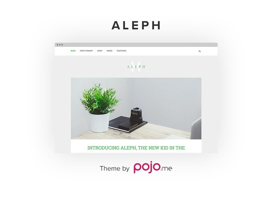 Aleph best WordPress theme