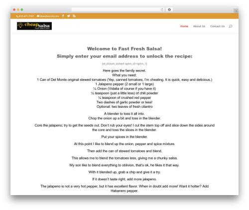 WordPress theme Divi - fastfreshsalsa.com