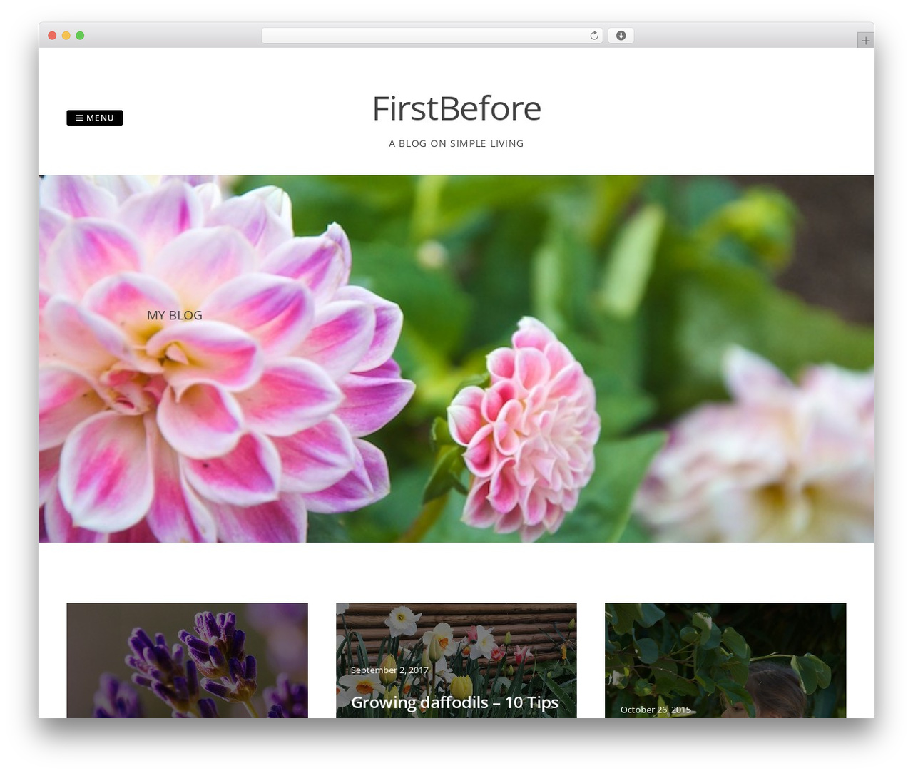 WordPress theme Gridsby Pro - firstbefore.com