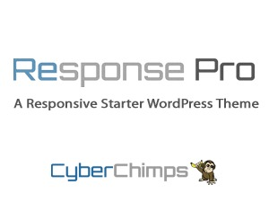 WordPress theme Response Pro