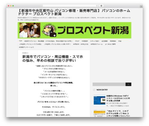Template WordPress stinger3ver20131023 - prospectn.com