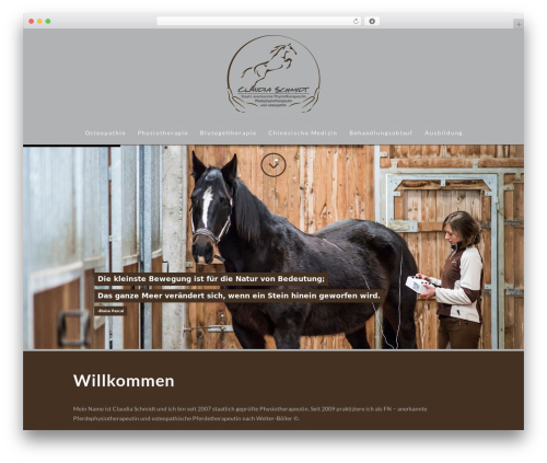 X WordPress theme - physio-osteo.de