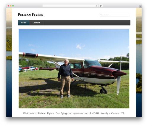 WordPress theme Function - pelicanflyers.com