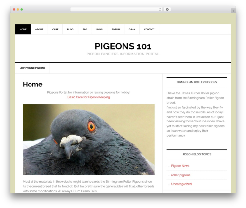 Free WordPress DW Question & Answer plugin - pigeons101.com