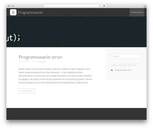 Business Leader free WordPress theme - programowanie.com