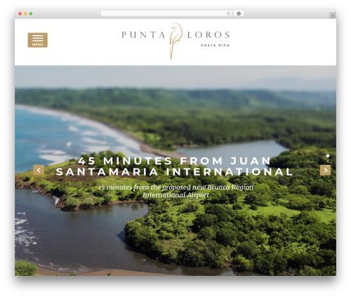 Free WordPress Snazzy Maps plugin - puntaloros.com