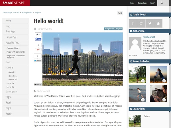 SmartAdapt WordPress theme design