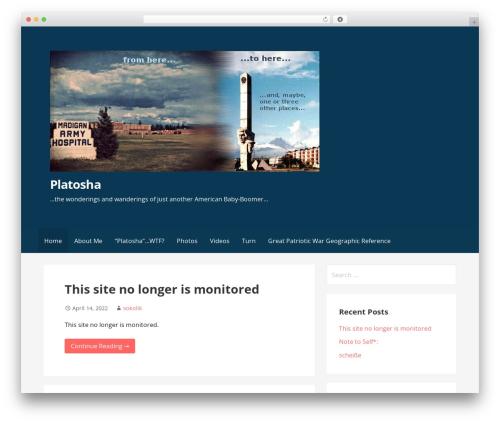 Theme WordPress Primer - platosha.net