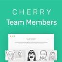 Free WordPress Cherry Team Members plugin by Zemez
