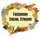 Free WordPress Facebook Social Stream plugin