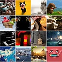 Free WordPress Gallery Pro plugin