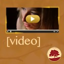 Free WordPress Plugin Name:       Responsive Video Shortcodes plugin