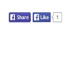 Free WordPress Social Ring (Facebook Like, Google +1, ReTweet, LinkedIn and Pin It) plugin