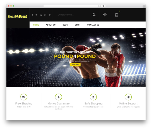 WordPress theme Sportbikes - pound4poundwear.com