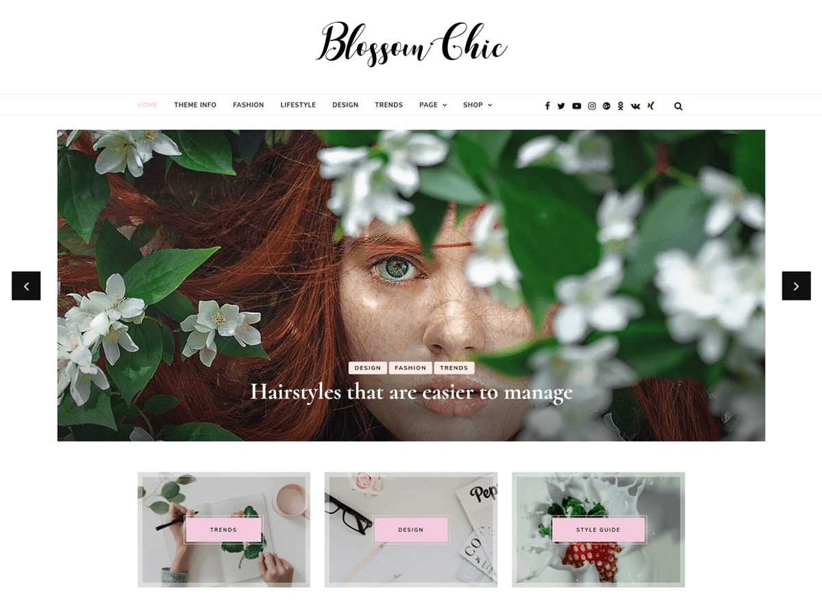 Blossom Chic WordPress portfolio theme