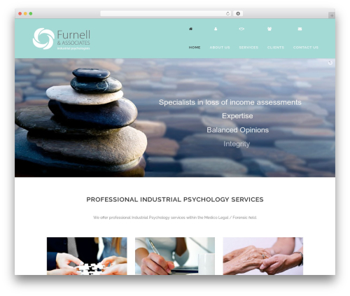 Bridge premium WordPress theme - furnell.co.za