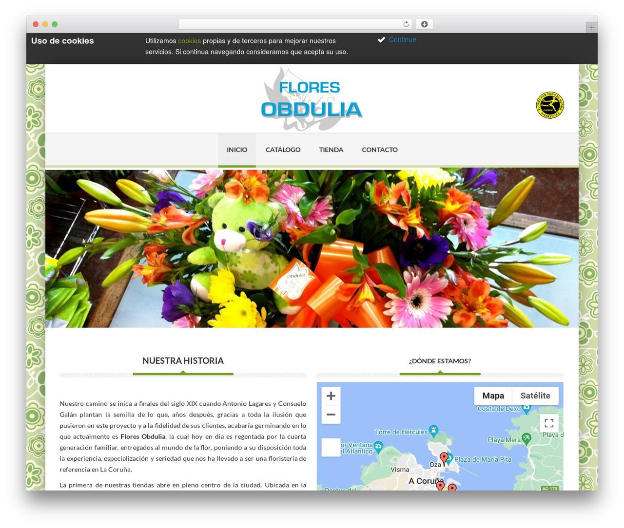 Delicate WP template - floresobdulia.es