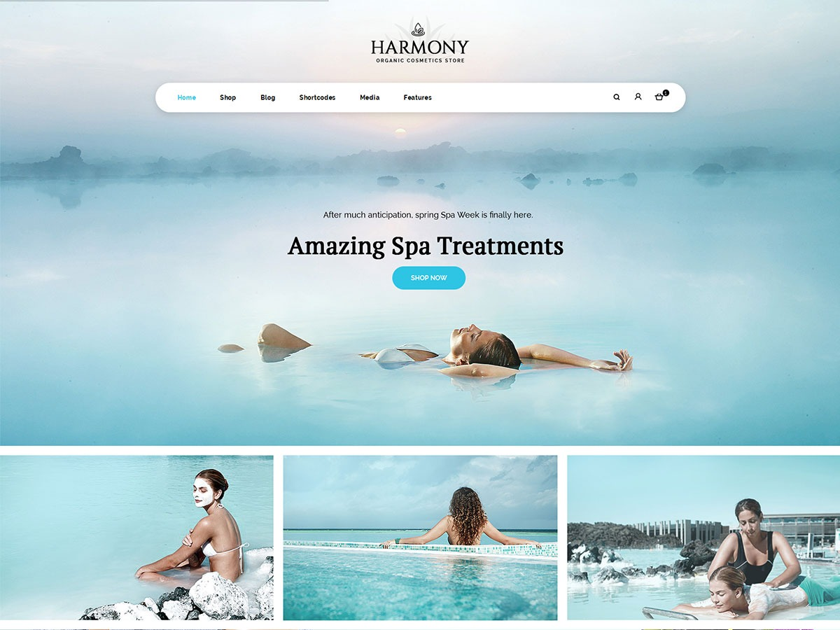 Harmonystore WordPress shop theme