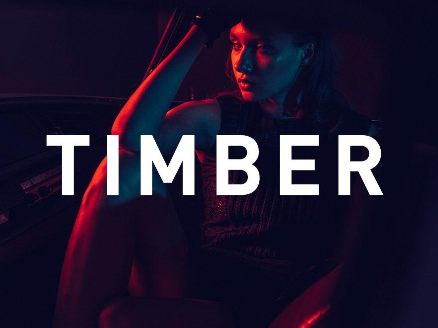 Timber Child top WordPress theme