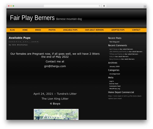WP template Layers - fairplayberner.com