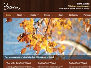 Born WordPress template