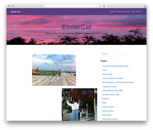 WP Bootstrap Starter WordPress template free download - praxpress.com