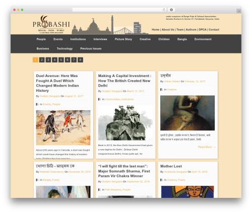 Pinboard WordPress news theme - probashionline.com