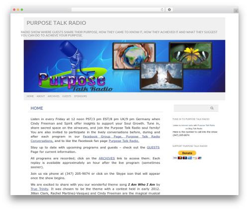 picolight template WordPress - purposetalkradio.com