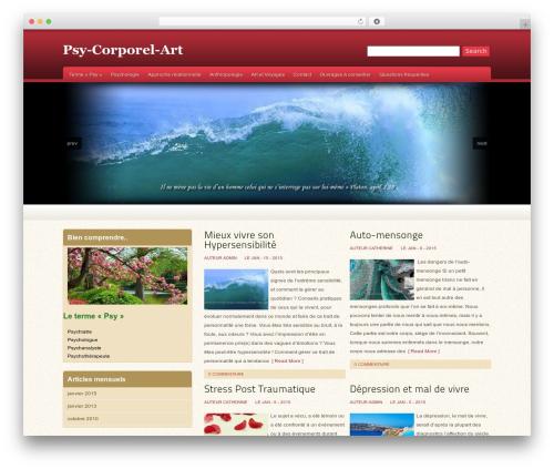 Oracle best WordPress theme - psy-corporel-art.fr