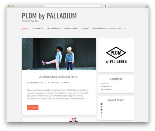 Polar Lite WordPress free download - pldm-blog.com